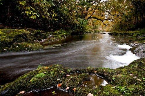 Forest Park Glenarm