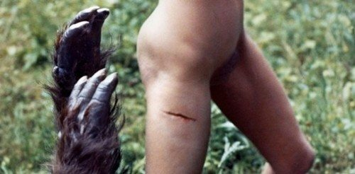film horror erotici chatt per sesso