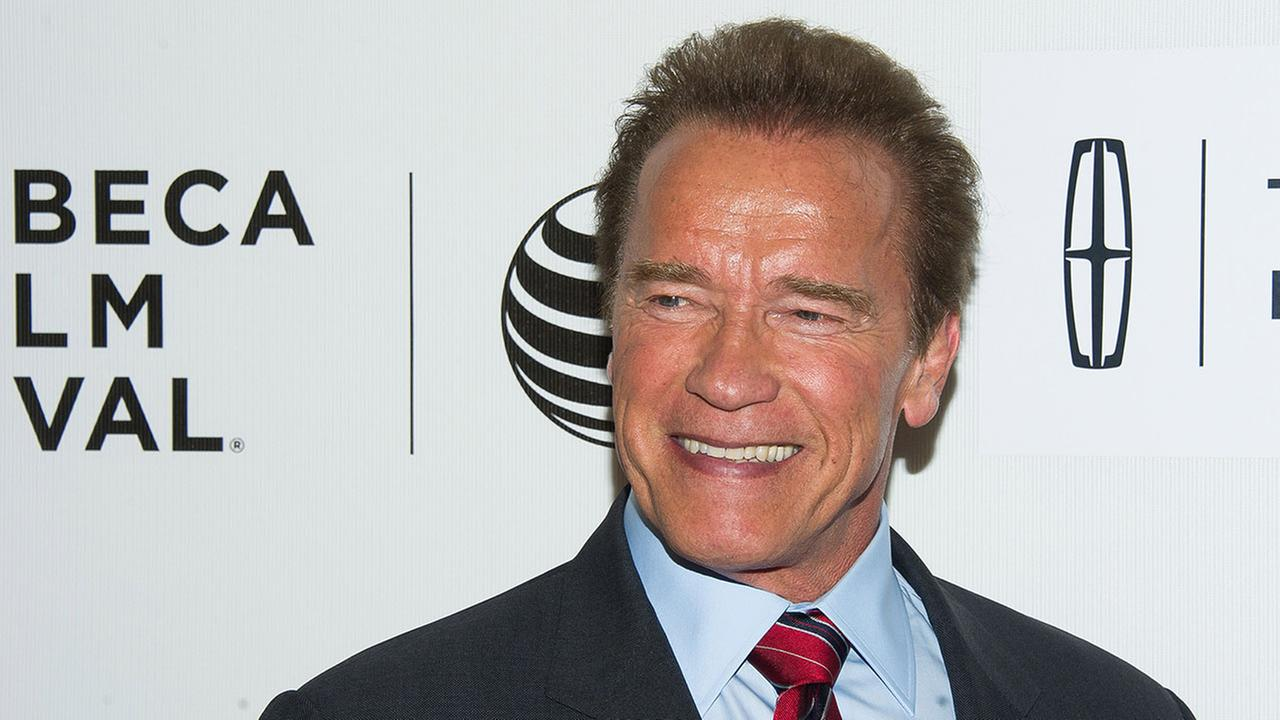 Schwarzenegger aggredito con un calcio volante alla schiena