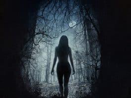 film horror in tv