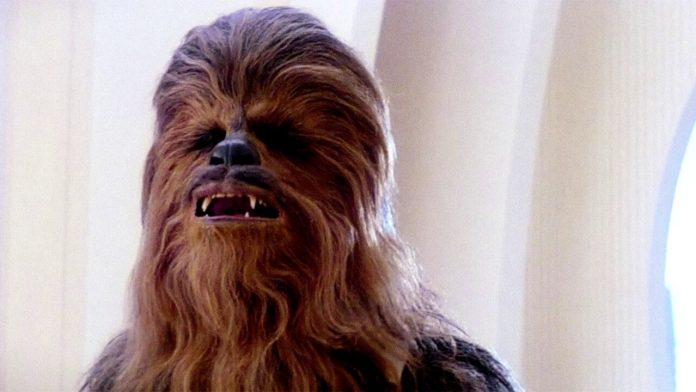 star wars: gli ultimi jedi chewbacca