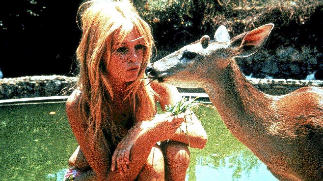Brigitte Bardot Film Canzoni E Vita Della Sex Symbol Di