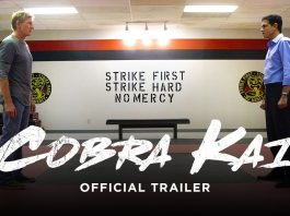 cobra kai, cinematographe