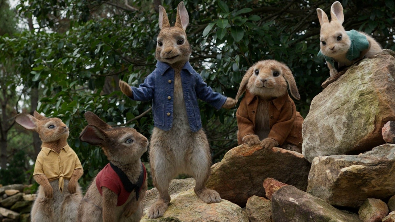 peter rabbit cinematographe