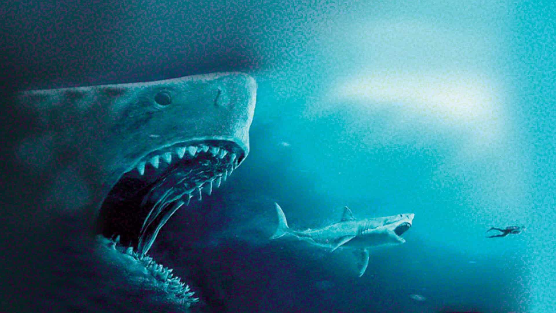shark il primo squalo