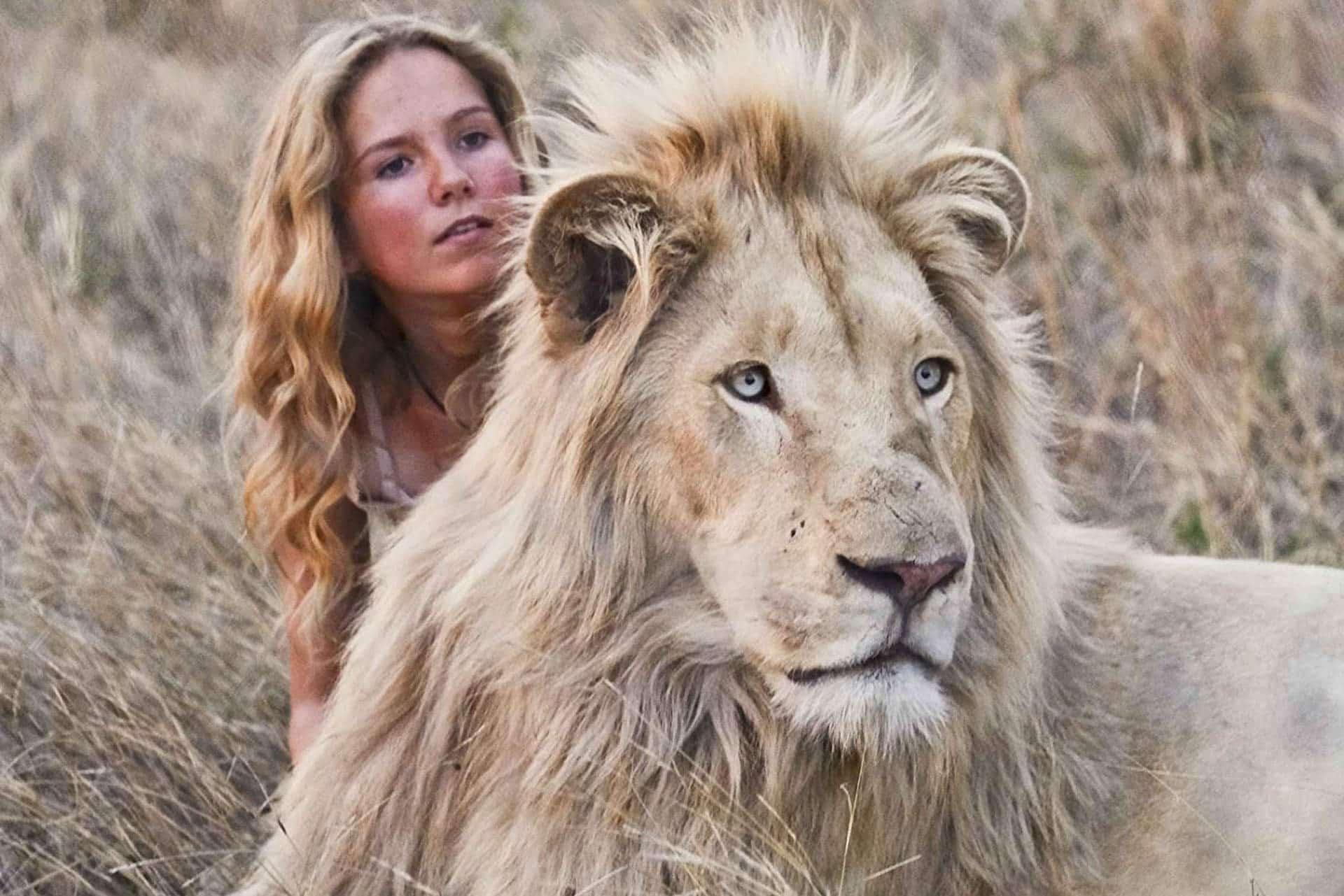 Romaff13 mia e il leone bianco recensione for Sfondi leone