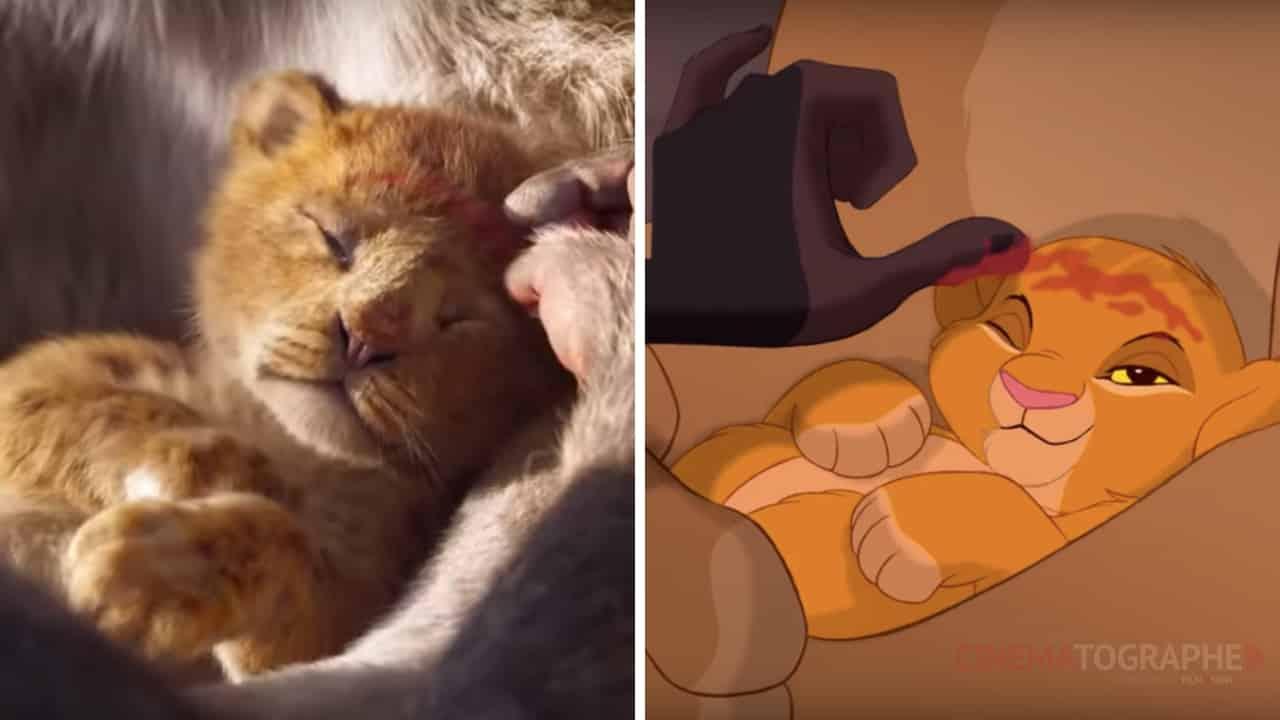 il re leone cinematographe.it