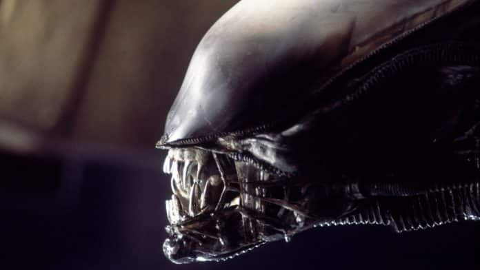 Alien - Cinematographe.it