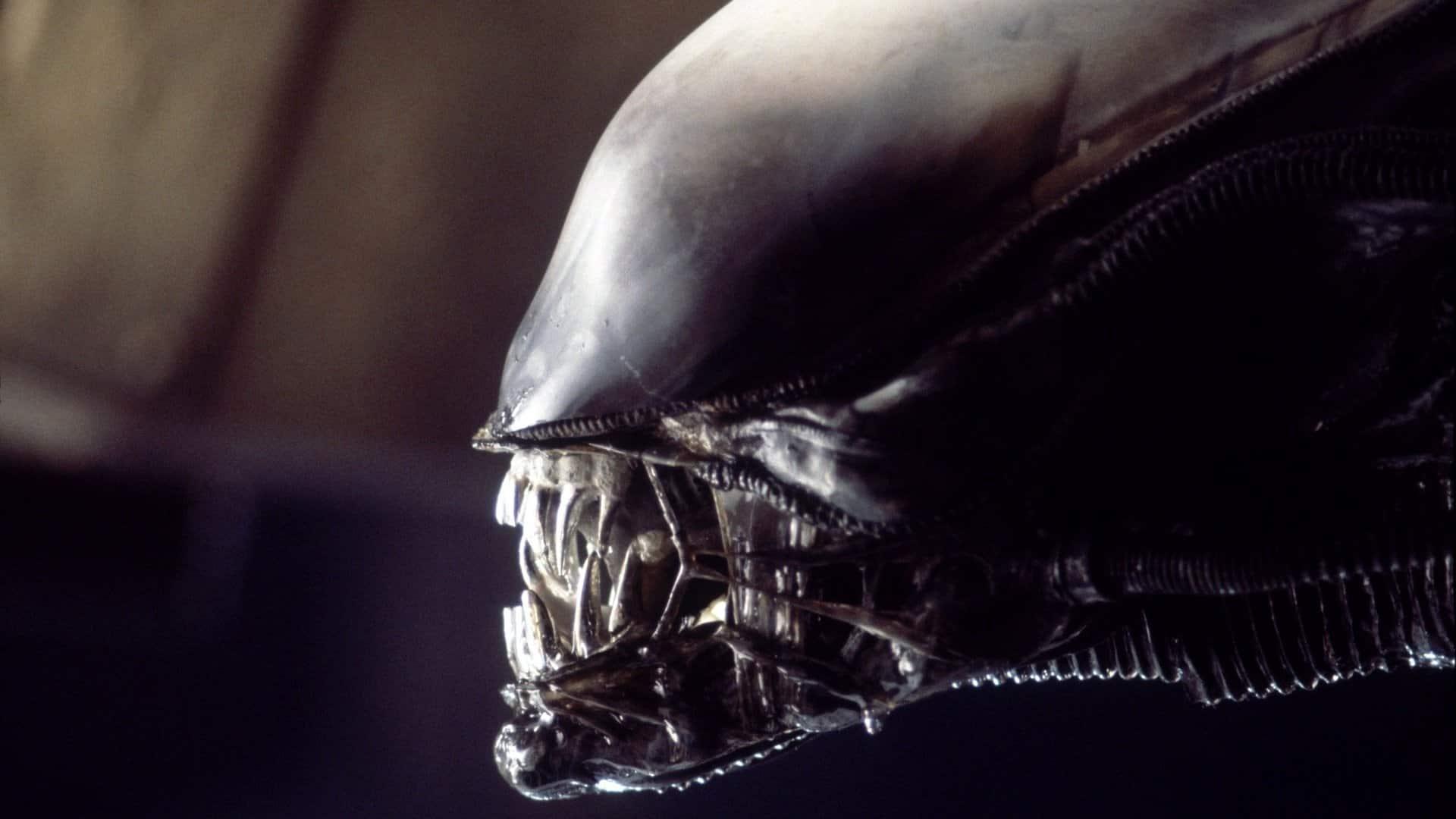 Alien: Ridley Scott pensa che il franchise si evolverà grazie alla Disney