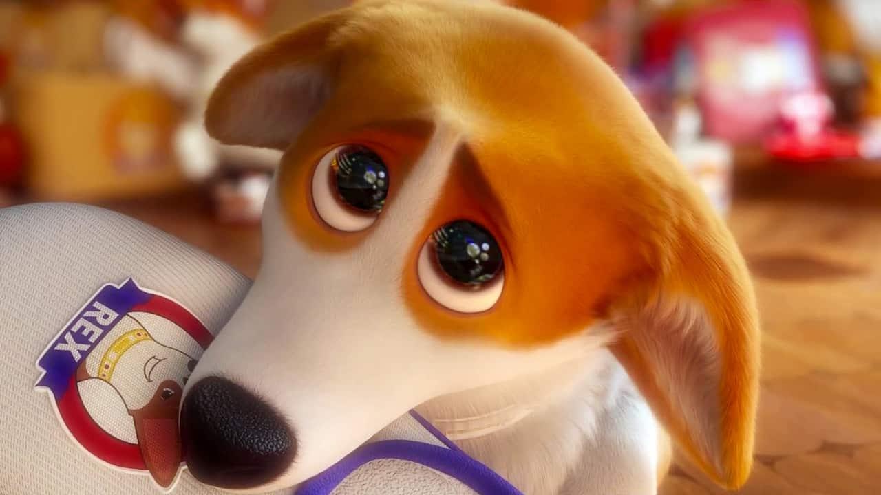 Rex - Un cucciolo a palazzo cinematographe
