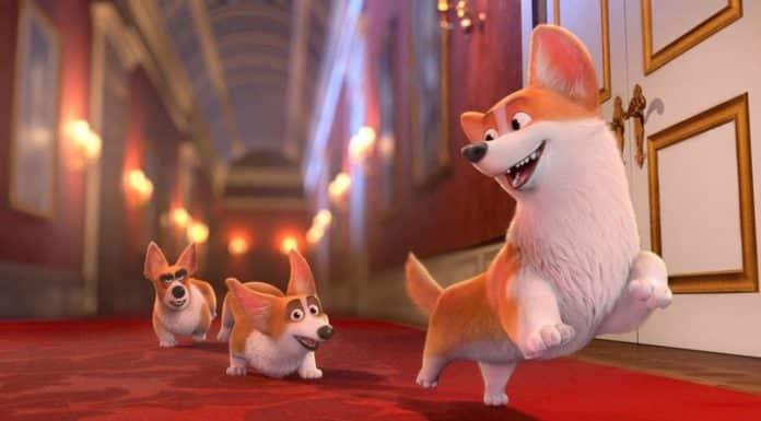 Rex - Un cucciolo a palazzo Cinematographe.it
