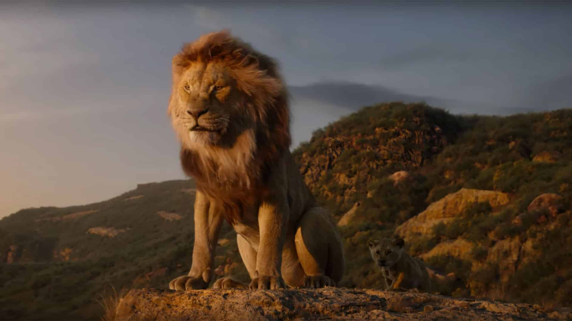 Risultati immagini per il re leone 2019 simba