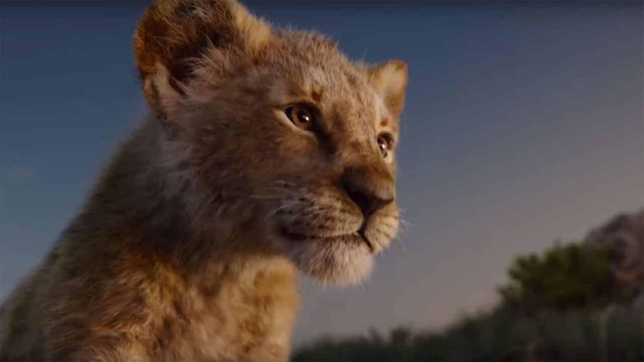 Il re leone 2019 : colonna sonora del live action disney