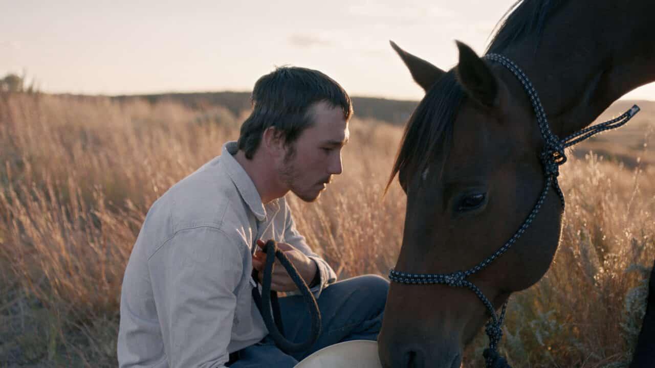 The Rider - Il Sogno di un Cowboy cinematographe.it