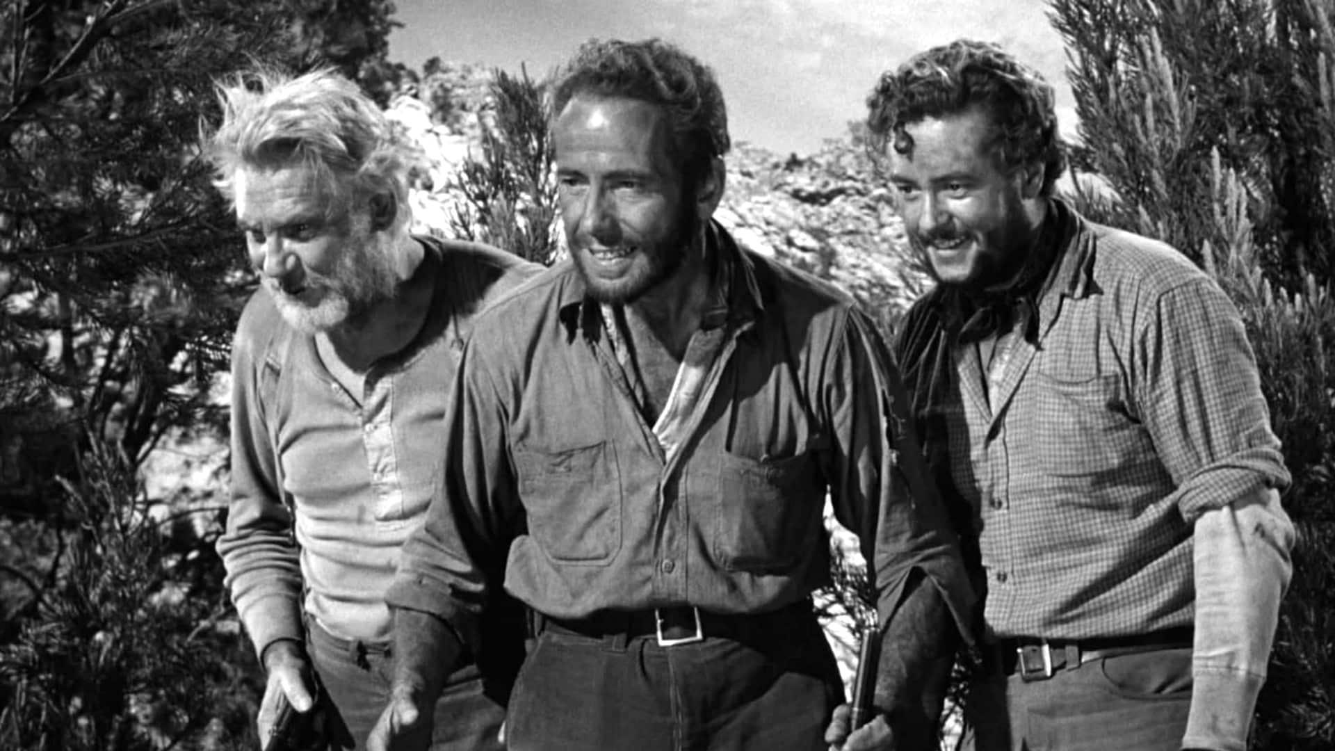 il tesoro della sierra madre, cinematographe.it