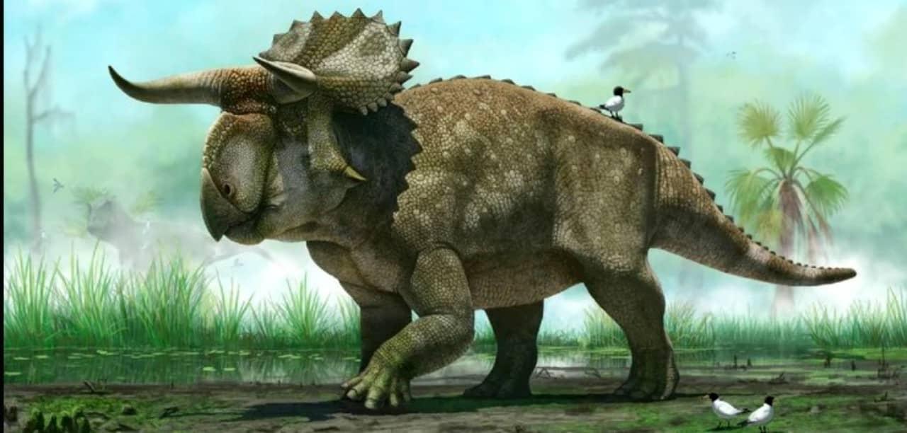 Jurassic World Battle At Big Rock - Cinematographe.it
