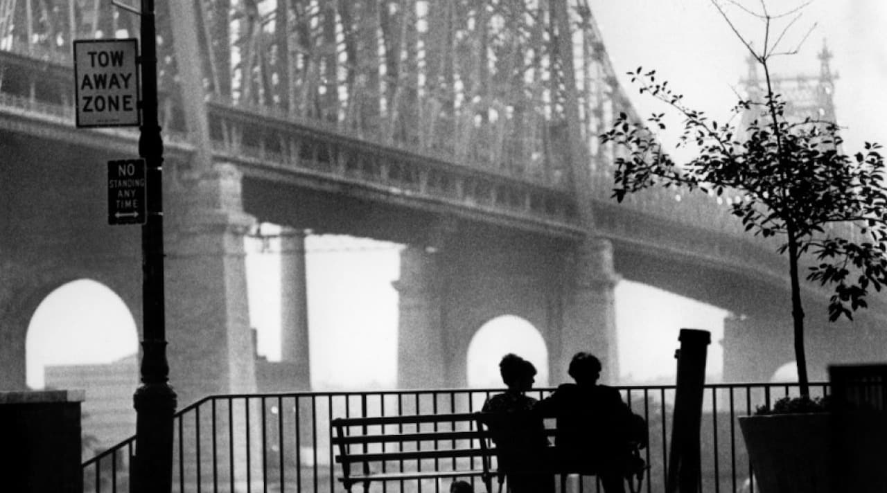 woody allen, cinematographe