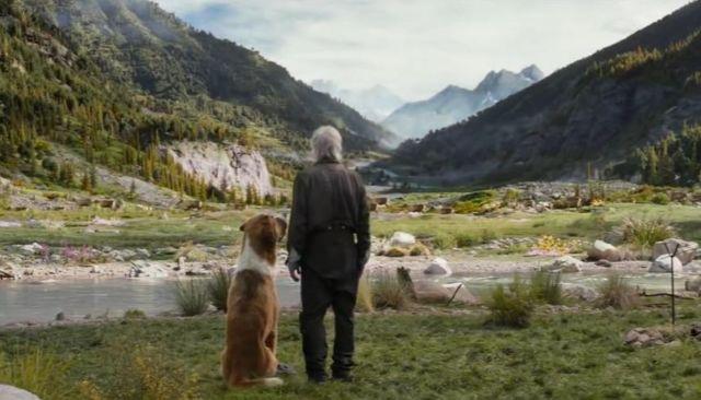 Il richiamo della foresta: recensione del film Cinematographe.it