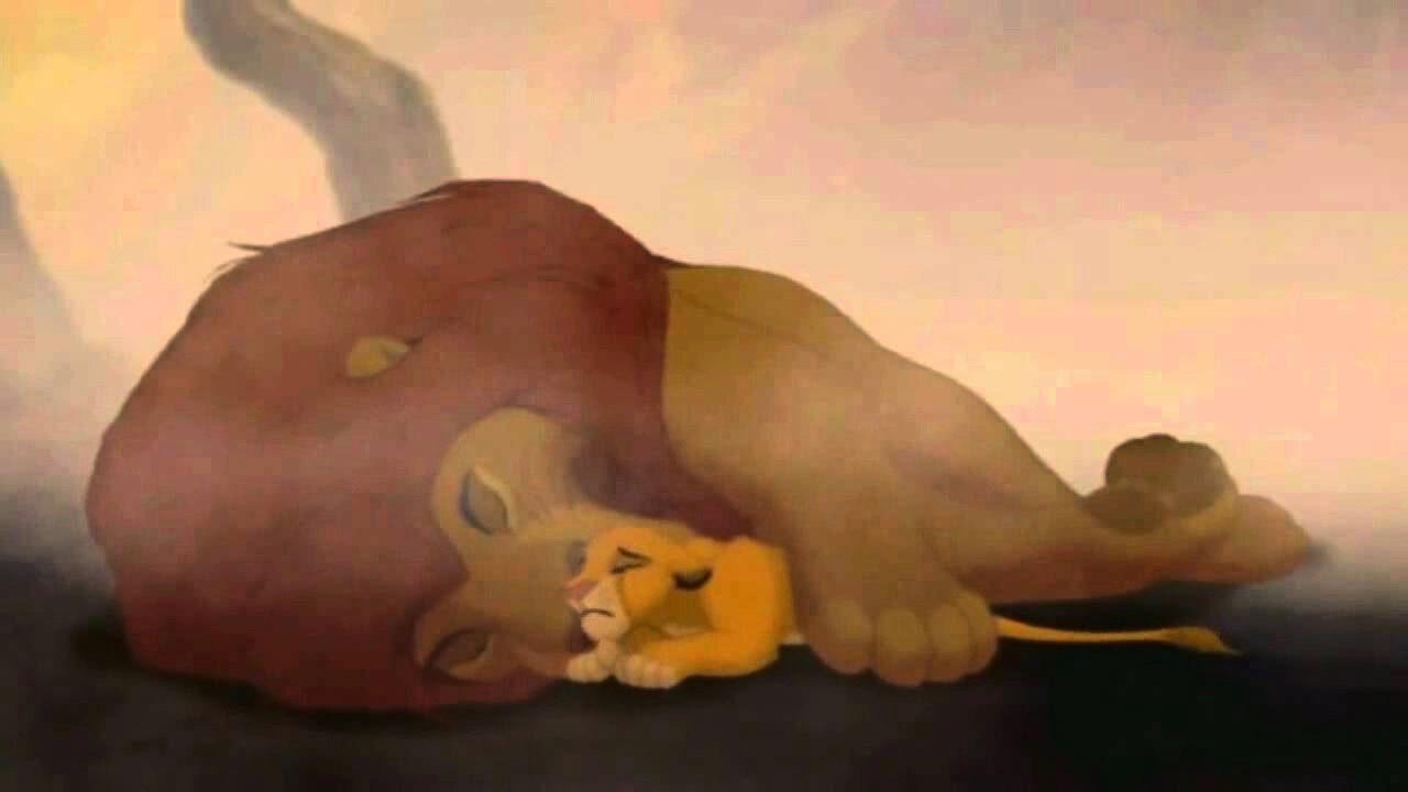 Film - Il re leone - cinematographe.it