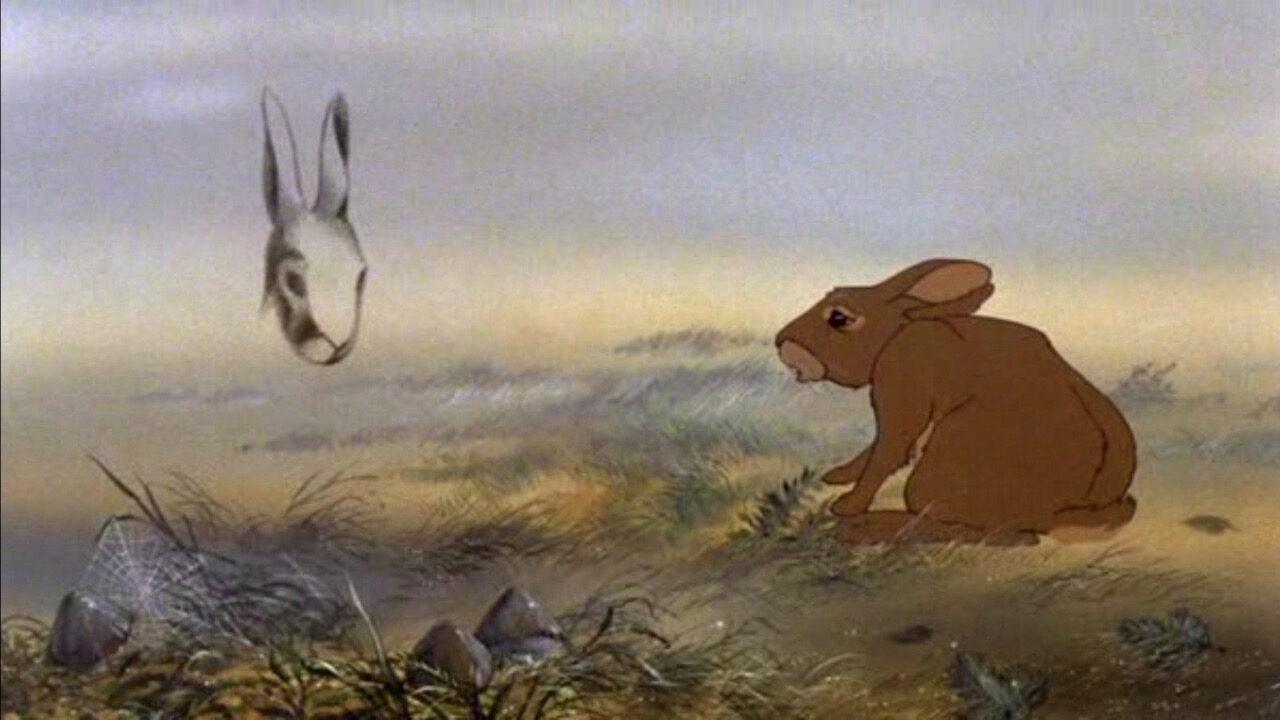 Film - La collina dei conigli - cinematographe.it