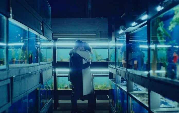 Little Fish, Cinematographe.it