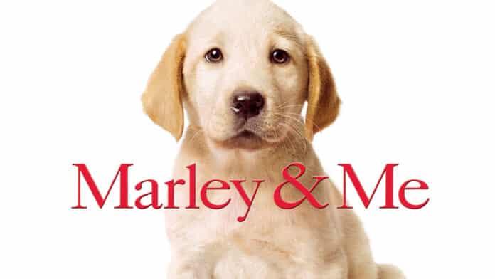 Io & Marley, cinematographe.it
