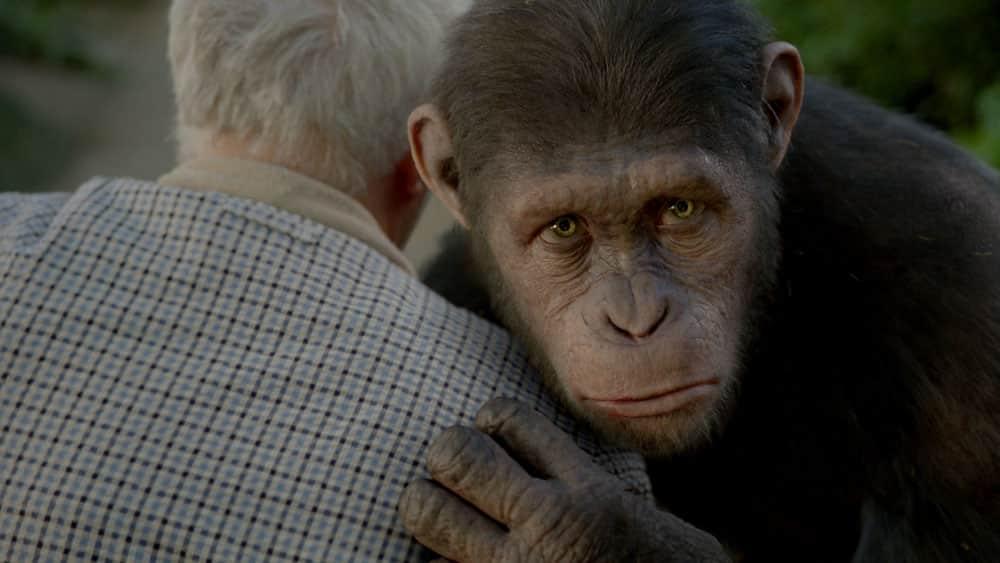 L'alba del pianeta delle scimmie cinematographe.it