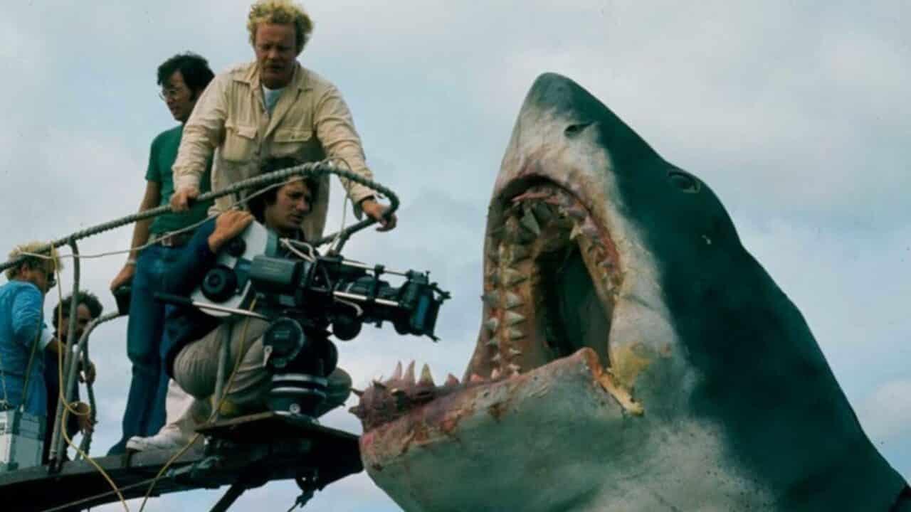 lo squalo, cinematographe.it