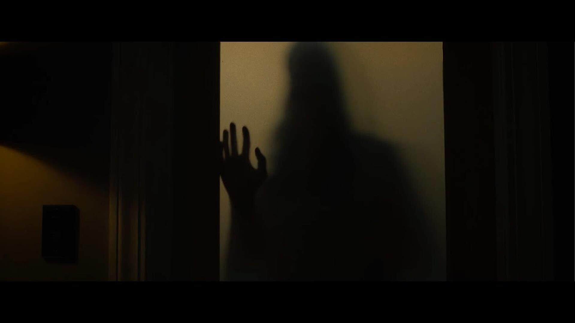 The Night House – La Casa Oscura Cinematographe.it