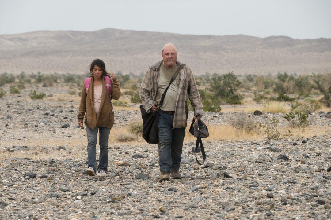 Coyote, cinematographe.it